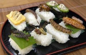 bugs-sushi