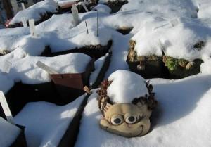 winterpot